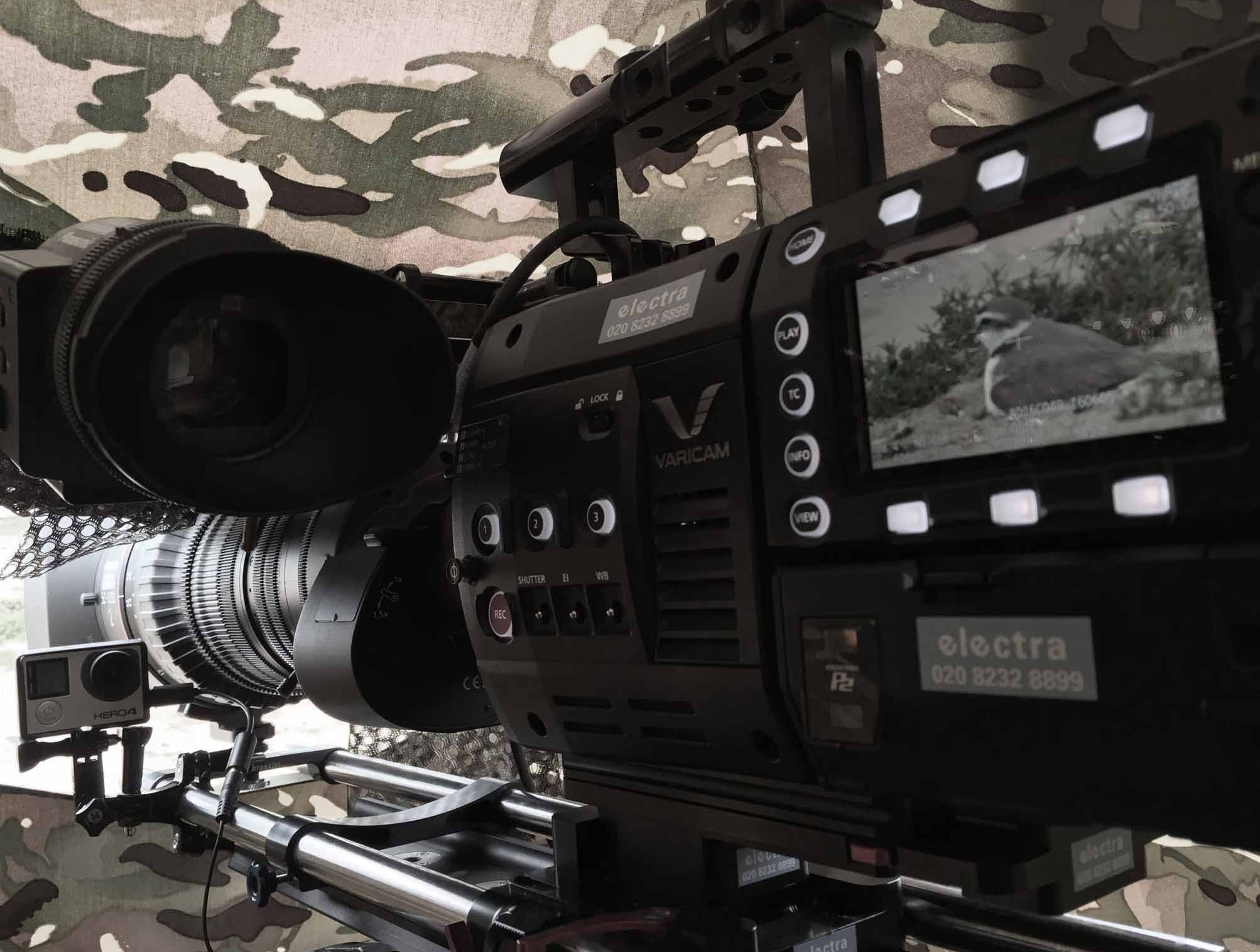 Camera with Plougher on the screen during filmng by Nick Ball wildlife cameraman in korea
