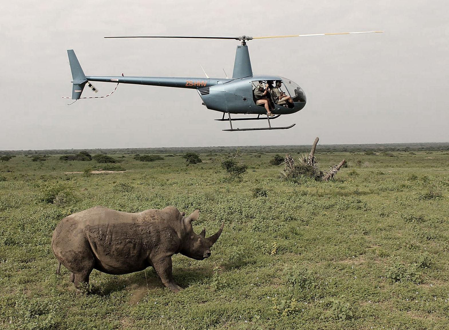 Nick Ball filming documentary on rhinos from helicopter